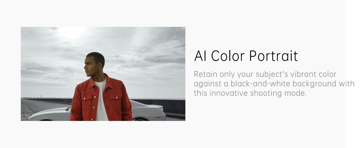 AI Color Portrait