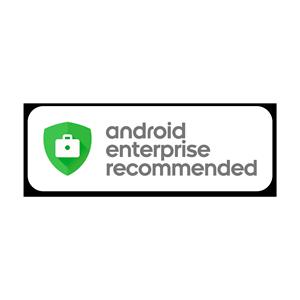 enterprise,nokia,3.1