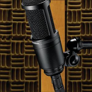 Audio-Technica AT2020 Cardioid Medium-diaphragm Condenser Microphone 6