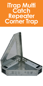 iTrap Multi Catch Clear Top Humane Repeater Corner Mouse Trap