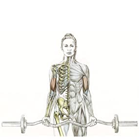 Frederic Delavier's Women's Strength Training Anatomy Workouts