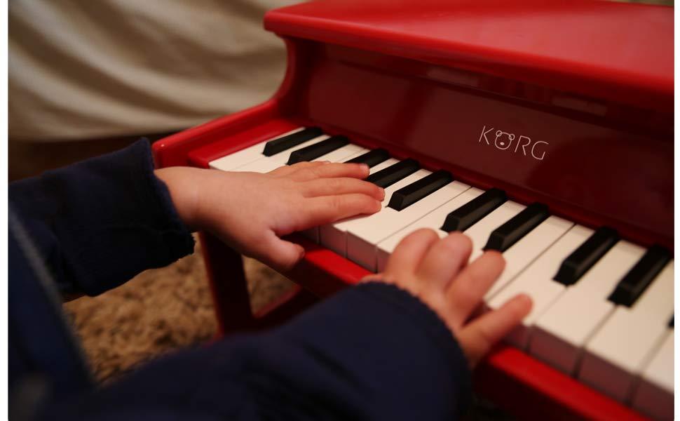 Korg Tiny Piano - Close up