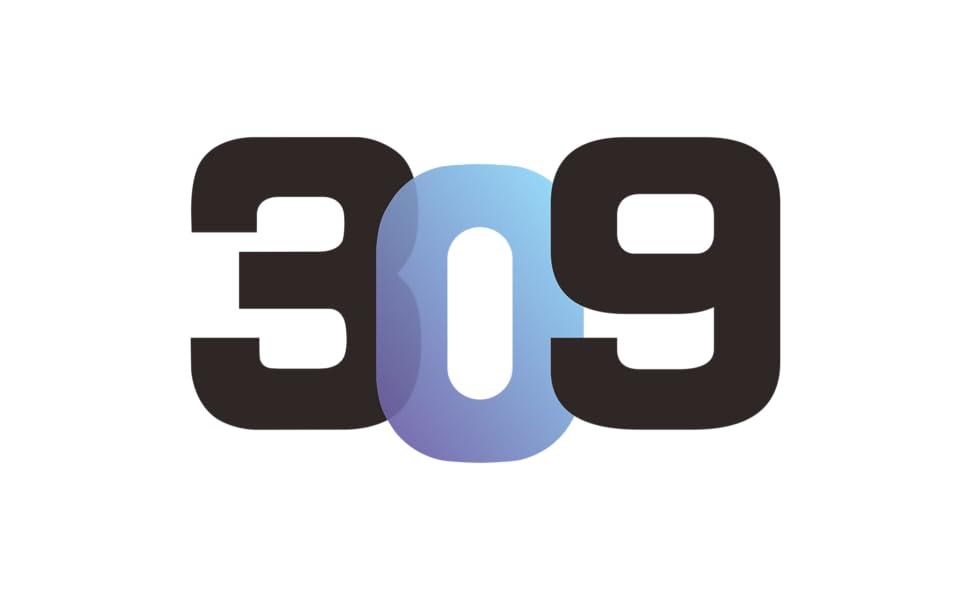 inwin 309