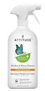 window_mirror_cleaner