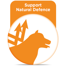 Support Natural Defence
