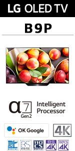 B9シリーズ OLED 有機ELテレビ