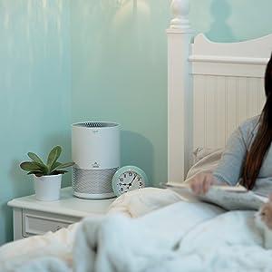 air purifier for home, personal air purifier, air purifier for pet, myair, 2780A, levoit