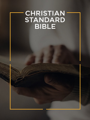 CSB, Christian Standard Bible, Best Bible translation, NIV, NKJV, ESV, Easy to read Bible