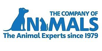 the company of animals halti no pull dog training