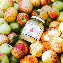 アップルソース  リンゴ 有機りんご アップルピューレ フルーツピューレ すりおろし 離乳食 備蓄 保存食