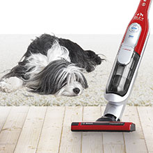 AllFloor ProAnimal HighPower Brush
