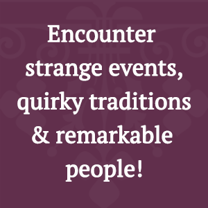 book, trivia, family, game, night, information, imagination, engage