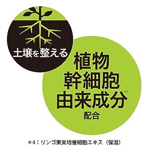 식물 줄기 세포 유래 성분