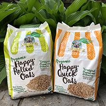 gluten free oatmeal, oatmeal, bakery on main oatmeal, rolled oats, quick oats, steelcut oats
