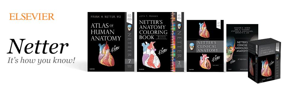 Netters Anatomy Flash Cards Netter Basic Science 9780323530507