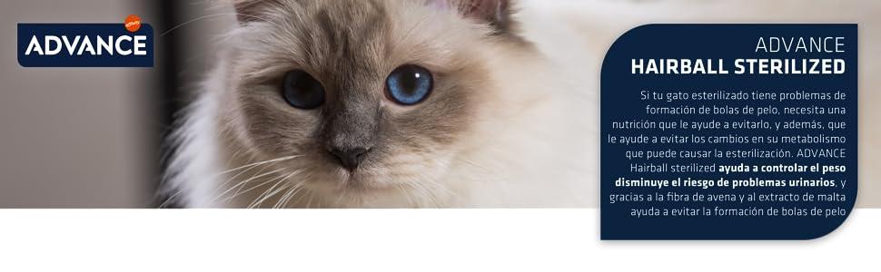 ADVANCE Hairball Pienso para Gatos Esterilizados - 10Kg: Amazon.es: Productos para mascotas