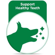 Supports Teeth