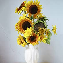 simply flower arranging, books on meditation, books on mindfulness, gardening and excercise