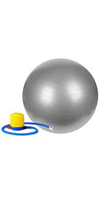 Sunny Health & Fitness Anti-Burst Gym Ball, 65 CM