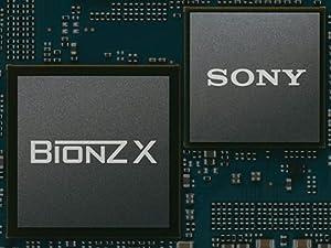 BionzX