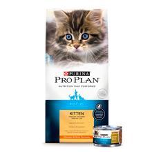 Purina Pro Plan FOCUS Adult Indoor Care Salmon & Rice Formula Dry Cat Food