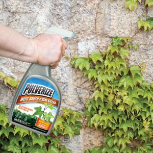 Pulverize Weed Brush Vine Killer in use