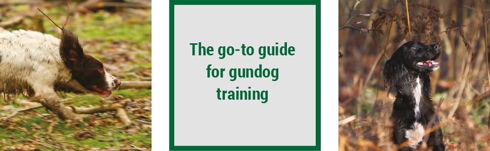 janet menzies, working spaniel, dog training, gundog training