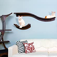Lotus Branch and Lead Cat Shelf