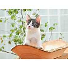 カレンダー2019 Cats