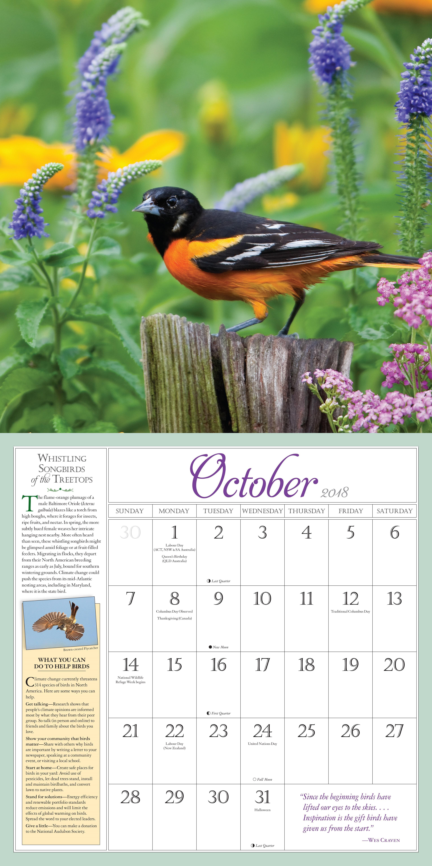 Secret Garden: Amazon.com: Audubon Birds In The Garden Wall Calendar 2018