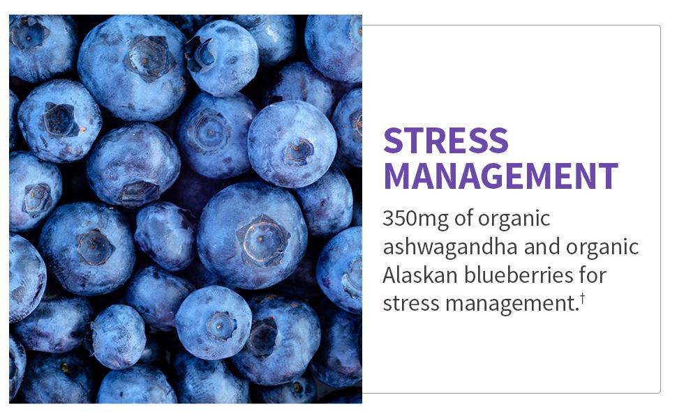 Emotional Well-Being Relaxation 50 Billion CFU Ashwagandha, Alaskan Blueberries Acacia Fiber