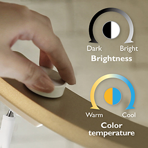 Adjustable color temperature and brightness