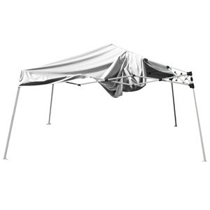 10'x10' canopy