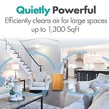 SmartSensor technology purification 1300 sqft energy efficient intelligent LED indicator air clean