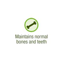 Maintains normal bones and teeth