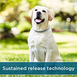 sustained release technology