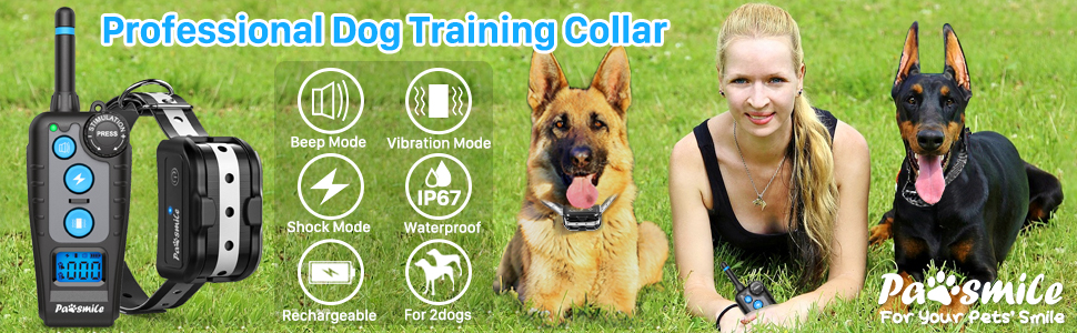 shock collar for dogs