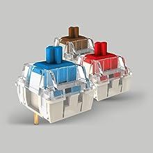 Cherry MX RGB Switches