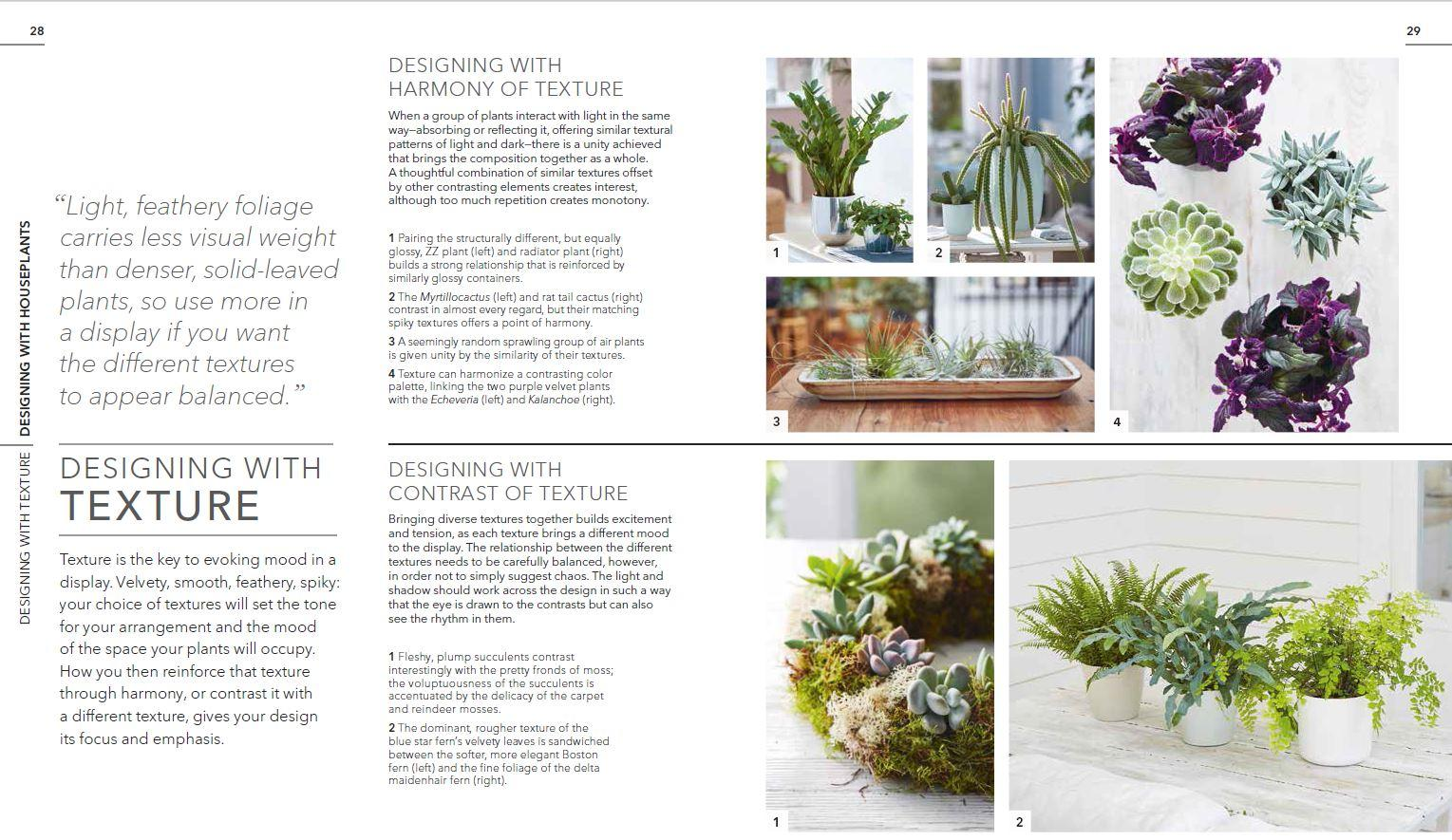 nobby design flowering succulent house plant identification. View larger Practical Houseplant Book Zia Allaway Fran Bailey  9781465469212 sumptuous design ideas green house plant identification The Best 100 Sumptuous Design Ideas Green House Plant