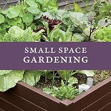 small space container garden vegetable grow farm ed smith