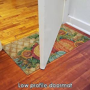 door;doorway;thin;low profile