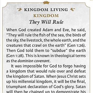Kingdom Living Lessons, personal, family, church, community, application lessons, Bible application