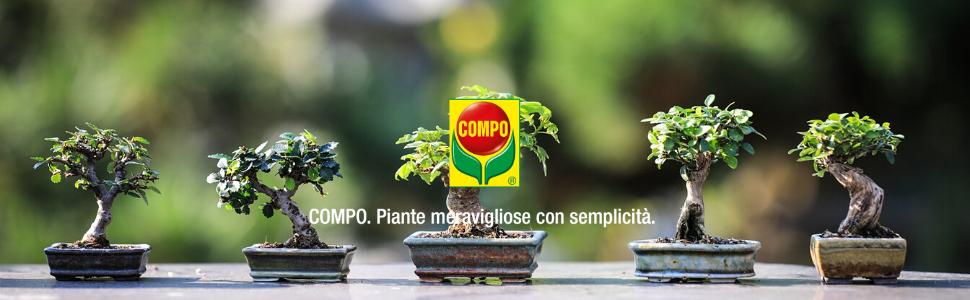concime fertilizzante compo bonsai