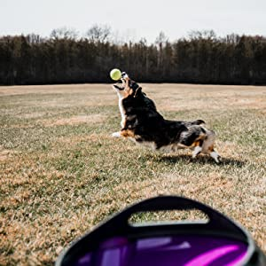 ball, thrower for dogs, chuckit, chuck it, throw tennis balls, automatic thrower for dogs