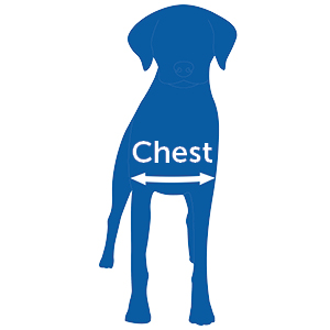 Chest measure correct fit easy walk harness