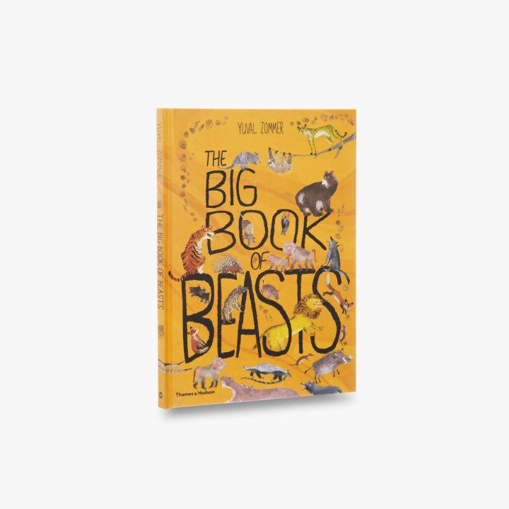 The Big Book of Bugs: Amazon co uk: Yuval Zommer, Barbara