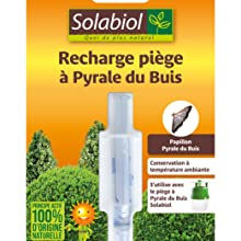 recharge pyrale buis