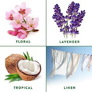 Room air freshener freshner freshmatic dispenser refills air wick airwick automatic lavender linen