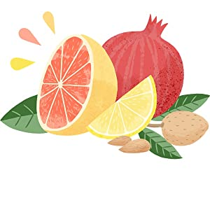 flavor for all drawing of a fruits
