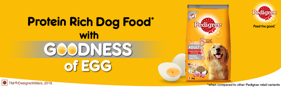 Goodness of egg for your dog